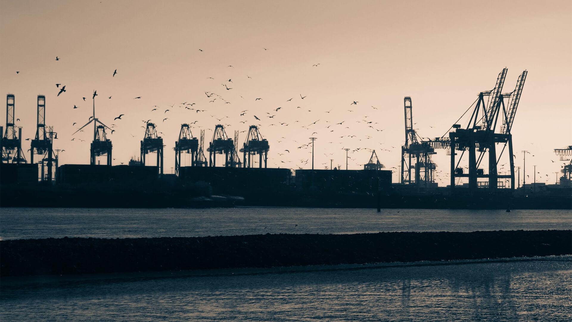 Bild des Hamburger Hafens